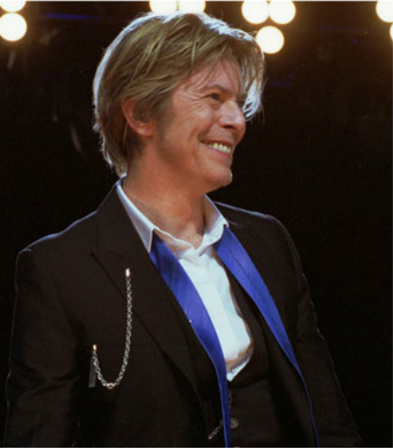 David Bowie, August 8, 2002  performed at Tweeter Center outside Chicago in Tinley Park, Illinois. Photographer Adam Bielawski.
